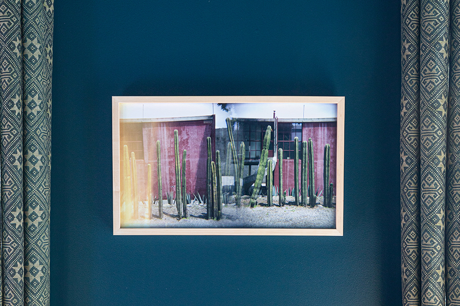 Robert Malmberg x St. Frank Collection